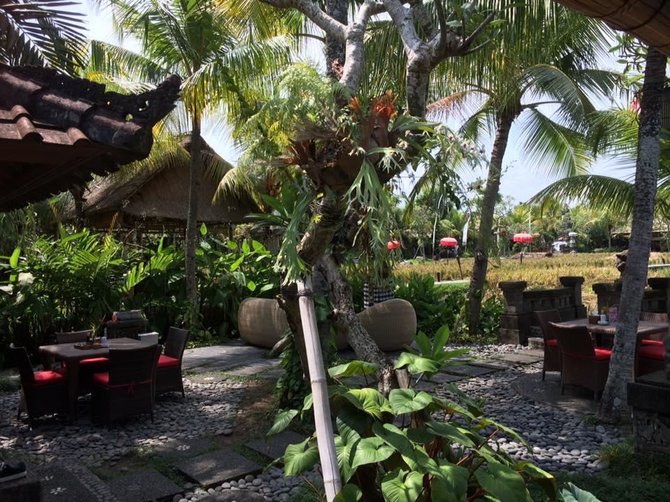 HBR-Bali_May-2016 (12)