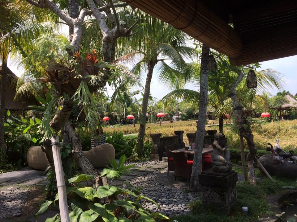 HBR-Bali_May-2016 (13)