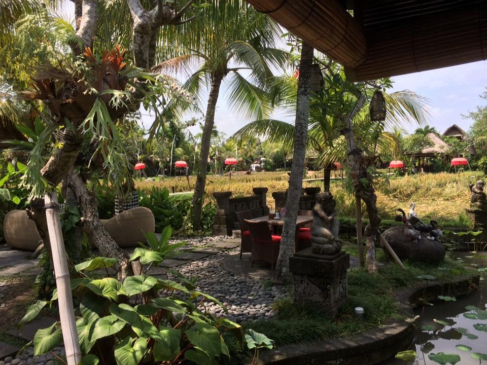 HBR-Bali_May-2016 (14)