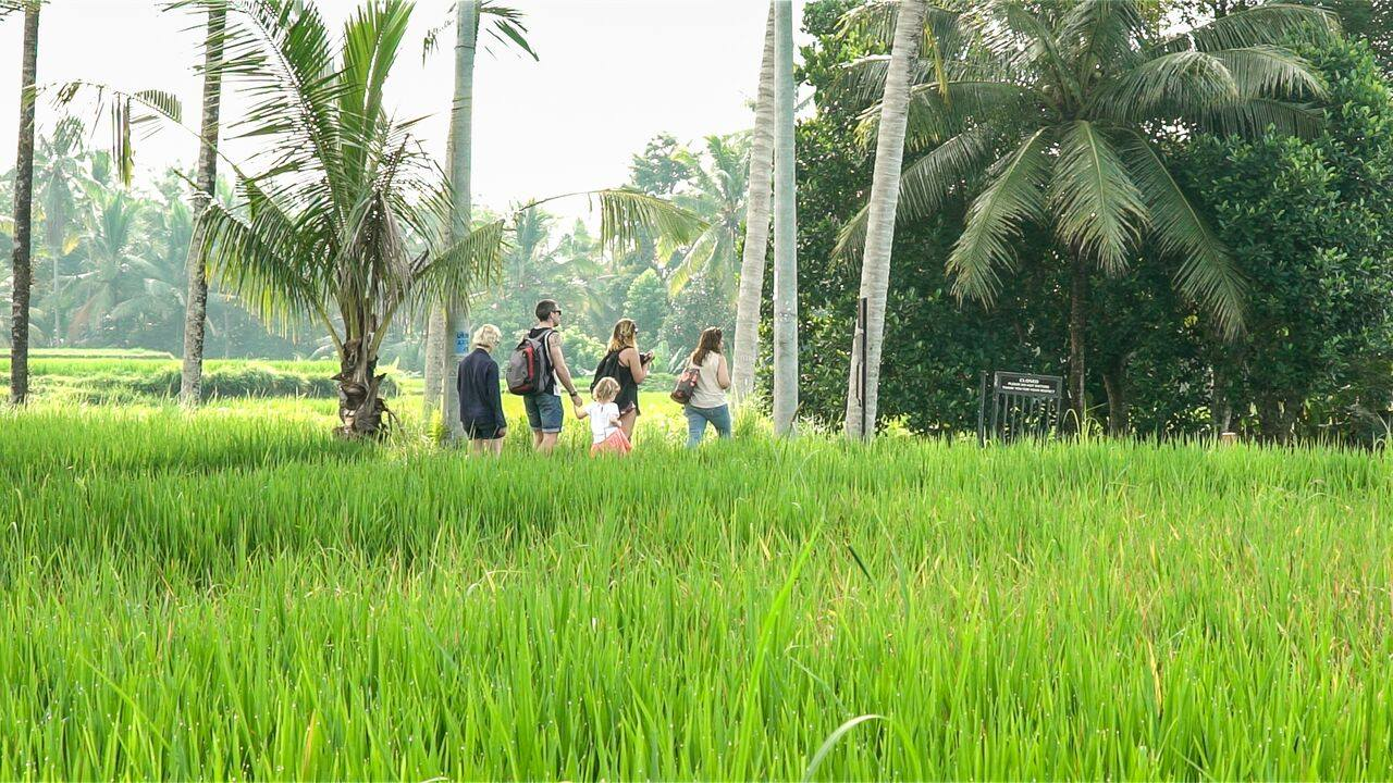 HBR-Bali_May-2016 (51)