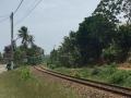 HBR-Sri-Lanka_August-16 (20)