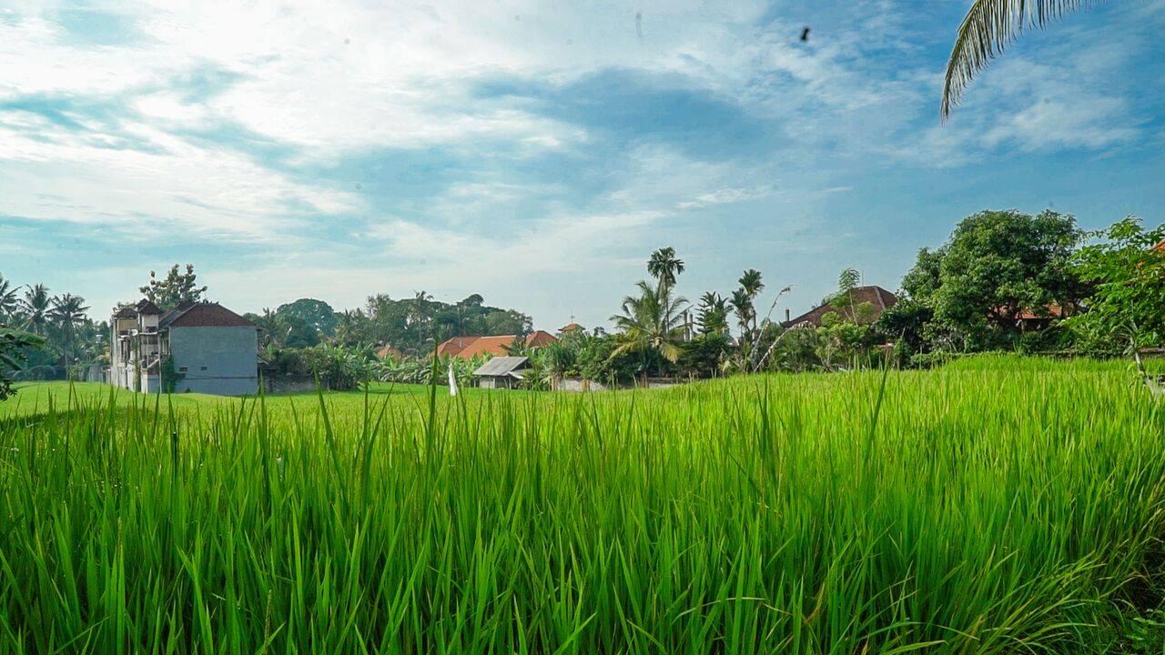 HBR-Bali_May-2016 (50)