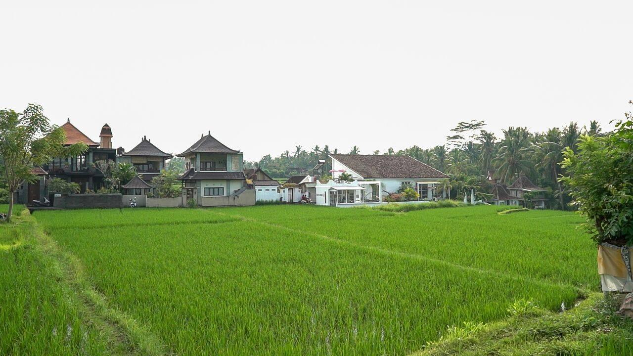 HBR-Bali_May-2016 (54)