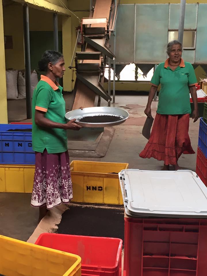 HBR-Sri-Lanka_August-16 (79)