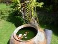 Bali-August-2013-HotBikRamRetreats (9)