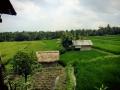 HBR_Bali_May15 (17).jpg