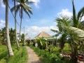 HBR_Bali_May15 (20).jpg