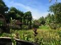 HBR_Bali_May15 (6).jpg