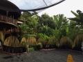 HBR Bali NYE 2017 (19)
