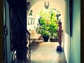 HBR_Mexico_June15 (2).jpg