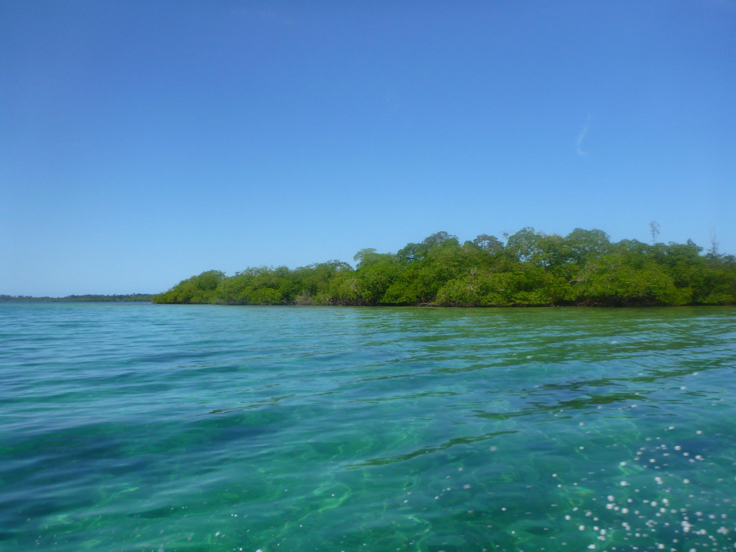 Bocas-Feb15 (156)